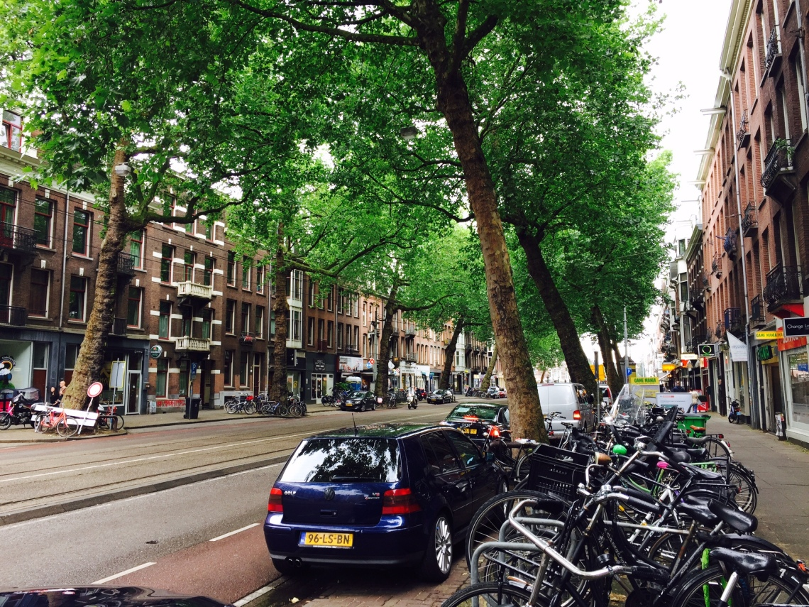 Photo of a typical Dutch street, with LRT lanes in the middle, one car lane in each direction, bike lanes, and generous sidewalks.